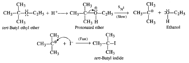 vedantu class 12 chemistry Chapter 11 Alcohols, Phenols and Ehers text 12e