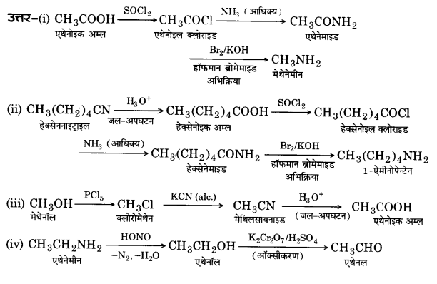 UP Board Solutions for Class 12 Chemistry Chapter 13 Amines 25