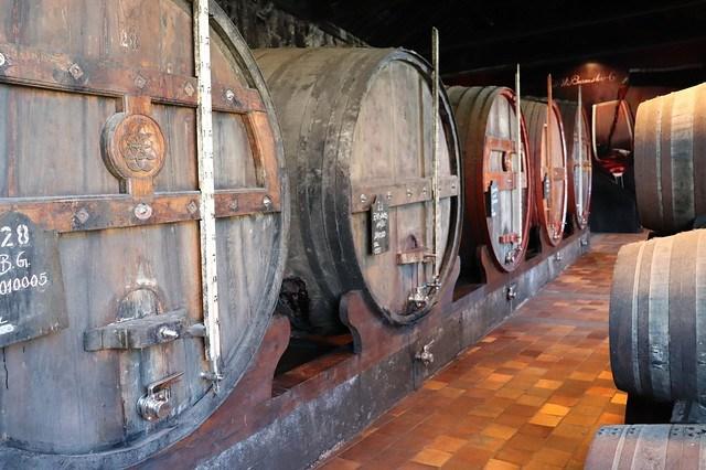 Visitar las Bodegas de Oporto