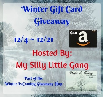 Winter Gift Card Giveaway & Giveaway Hop