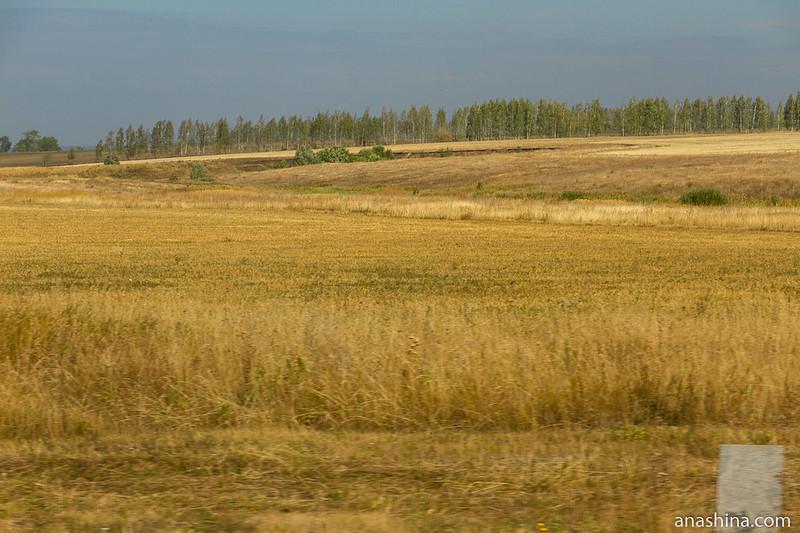 Поля, Пензенская область
