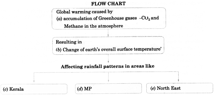 NCERT Solutions for Class 9 English Main Course Book Unit 3 Environment Chapter 1 The Indian Rhinoceros 17