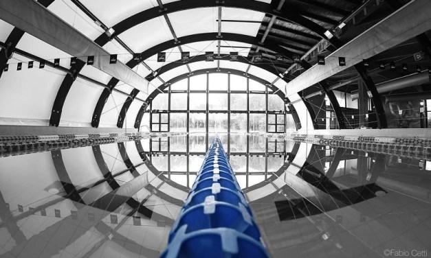 FINA versus Swim for Energy a suon di dollari