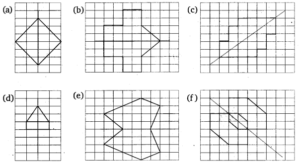 NCERT Solutions for Class 6 Maths Chapter 13 Symmetry 5