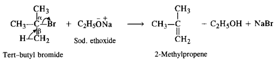 NCERT Solutions for Class 12 Chemistry Chapter 11 Alcohols, Phenols and Ehers ex 25b