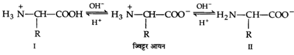 UP Board Solutions for Class 12 Chemistry Chapter 14 Biomolecules 12