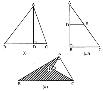 ML Aggarwal Class 9 Solutions for ICSE Maths Chapter 12 Pythagoras Theorem     ch1