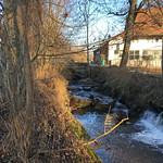 2018_12_12_7_Brücken_Aaretal_Kiesental (207)