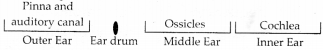NCERT Solutions for Class 9 Science Chapter 12 Sound 18