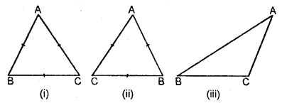 Selina Concise Mathematics Class 6 ICSE Solutions - Triangles (Including Types, Properties and Constructions) -7a