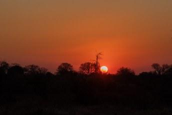 We reden in een klein uurtje naar de ingang van het park terwijl we de zon op zagen komen.
