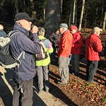 2018_12_12_7_Brücken_Aaretal_Kiesental (165)