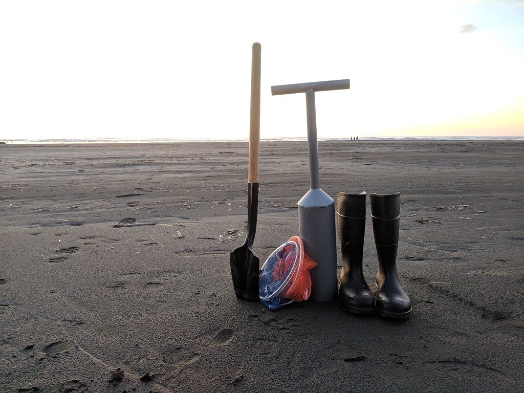 Razor Clam supplies
