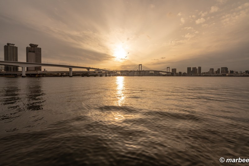 Tokyo Bay is dying today