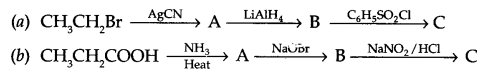 CBSE Sample Papers for Class 12 Chemistry Paper 4 Q.21.1