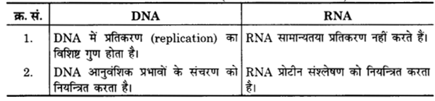 UP Board Solutions for Class 12 Chemistry Chapter 14 Biomolecules 15