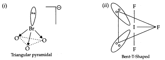 CBSE Sample Papers for Class 12 Chemistry Paper 7 Q.8