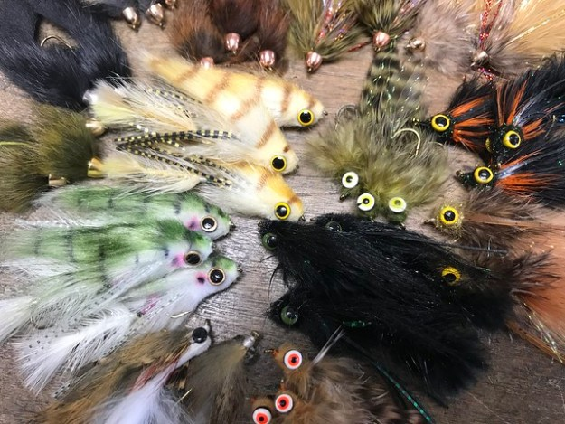 Streamer Fishing in Maryland