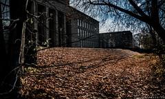 Braunschweig-Kolleg