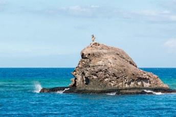 Bij één resort worden de nieuwe gasten verwelkomd met een dansje op een rots midden in zee.