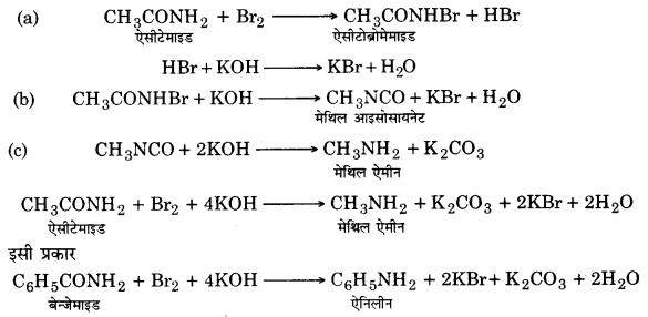 UP Board Solutions for Class 12 Chemistry Chapter 13 Amines 34