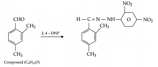 CBSE Sample Papers for Class 12 Chemistry Paper 4 Q.24.2