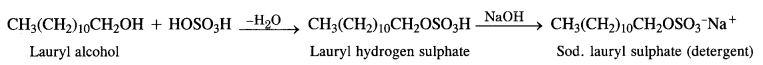 NCERT Solutions for Class 12 Chemistry Chapter 16 Chemistry in Every Day Life e20