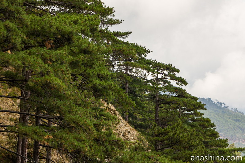 Скалы около водопада Учан-Су, Ялта, Крым