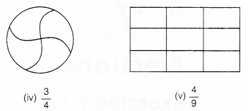 NCERT Solutions for Class 6 Maths Chapter 7 Fractions 4