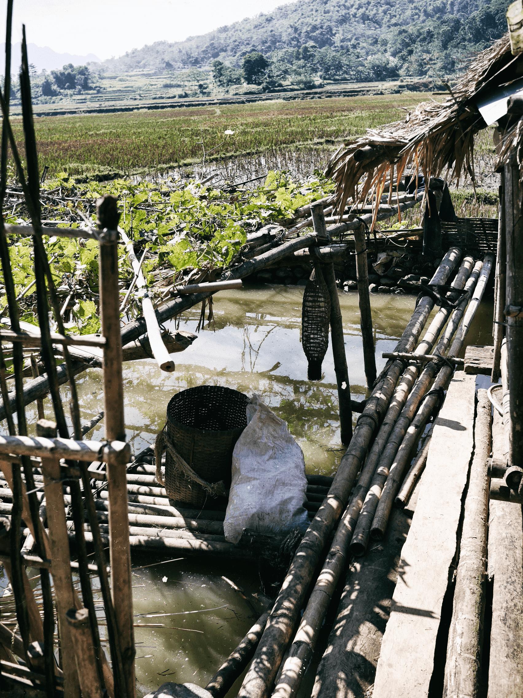 Pu Luong reserve village
