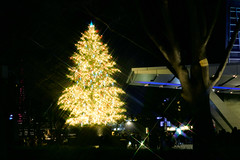 Christmas tree @ Roppongi Hills