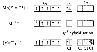 vedantu class 12 chemistry Chapter 8 d-and f-Block Elements 23