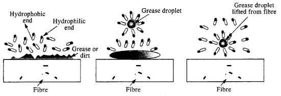 NCERT Solutions for Class 12 Chemistry Chapter 5 Surface Chemistry 9