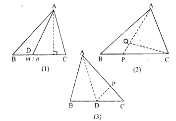 ML Aggarwal Class 9 Solutions for ICSE Maths Chapter 14 Theorems on Area     9