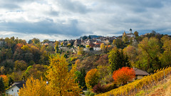 Autumn in Aubonne