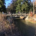 2018_12_12_7_Brücken_Aaretal_Kiesental (124)
