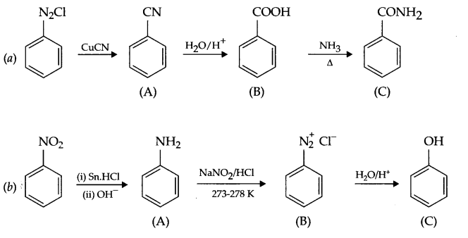 CBSE Sample Papers for Class 12 Chemistry Paper 2 Q.19.2