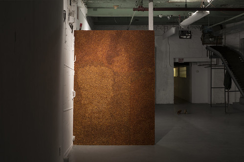 dry wall, crushed chili pepper, clear gesso