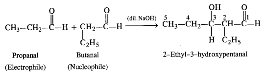NCERT Solutions for Class 12 Chemistry Chapter 12 Aldehydes, Ketones and Carboxylic Acids e9c