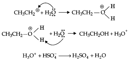 CBSE Sample Papers for Class 12 Chemistry Paper 4 Q.8.2