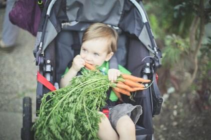 Baby Zay and the carrots