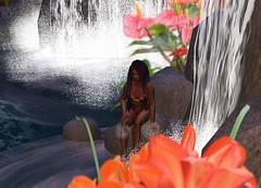 nat_waterfall_flowers