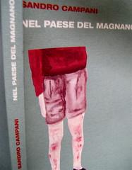 Sandro Campani, Nel paese del Magnano, Italic 2010; grafica di copertina: Giordano Giunta; dorso e cop. (part.), 1
