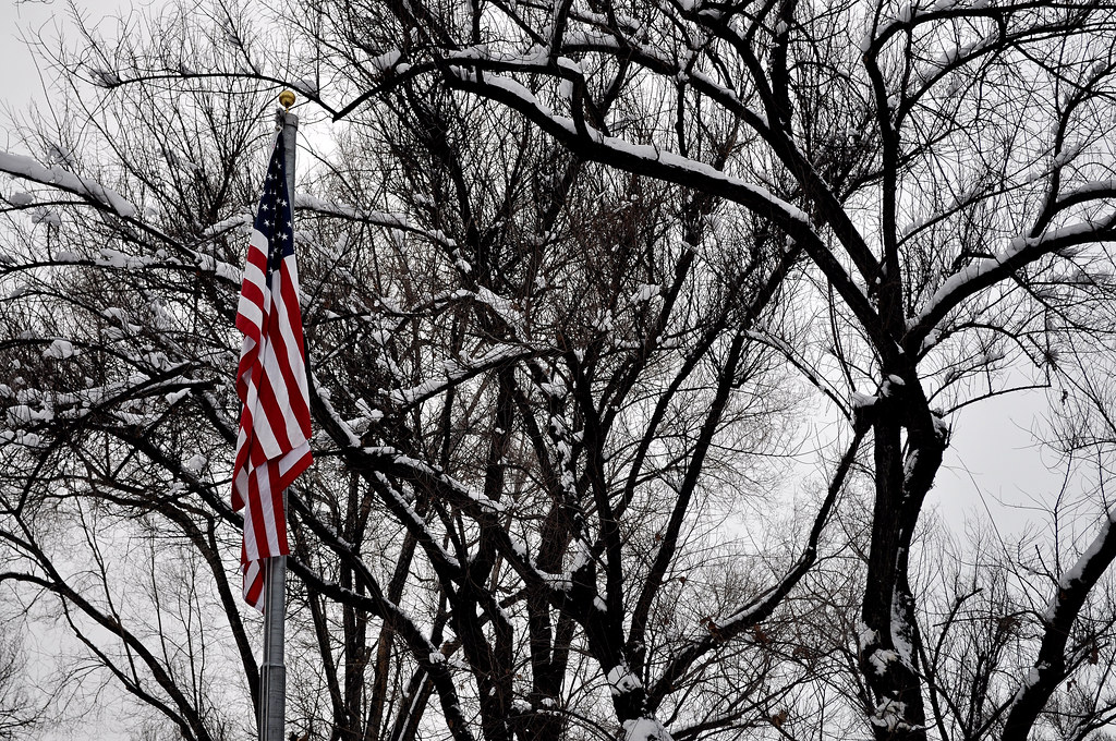 Flag Trees and Snow