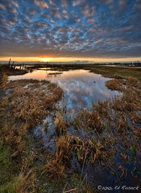 Sunrise at Viera Wetlands