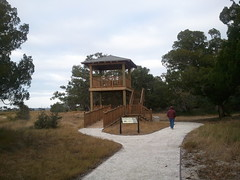 Wildlife Viewing Tower