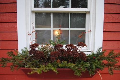 christmas window boxes