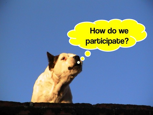 How do we participate?
