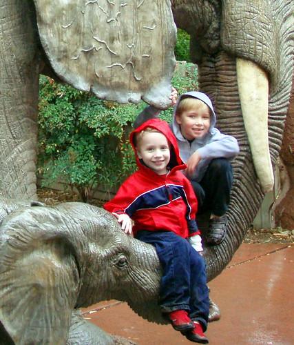 Elephant Boys
