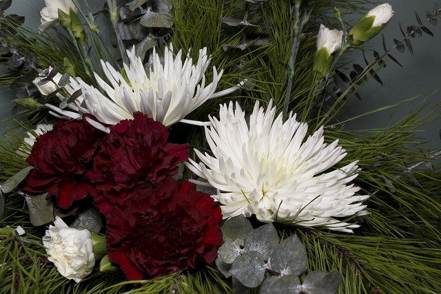 Carnations and Mums